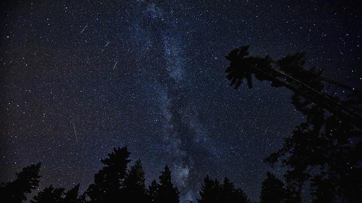 Жители Воронежской области в августе увидят самый красивый звездопад года