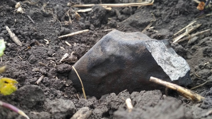 Учёные показали фрагменты метеорита, падение которого увидели воронежцы