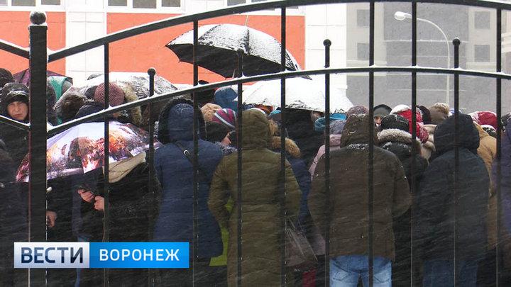 Глава управления образования Воронежа: «Списки ночующих у школы родителей бессмысленны»
