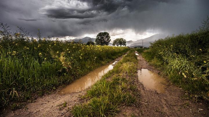 Выходные в Воронежской области будут холодными и дождливыми