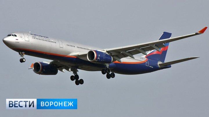 Из-за сильного снегопада компания «Аэрофлот» отменила и перенесла воронежские рейсы