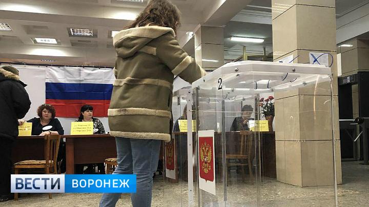 Явка на выборах президента к 15:00 в Воронежской области составила 43%