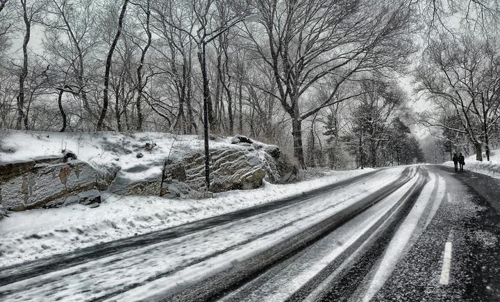 Проигравшие торги подрядчики отказались от борьбы за контракты на ремонт воронежских дорог