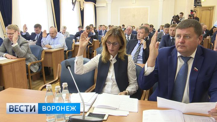 Воронежцы оспорят в суде запрет думы на конференцию об отмене выборов мэра