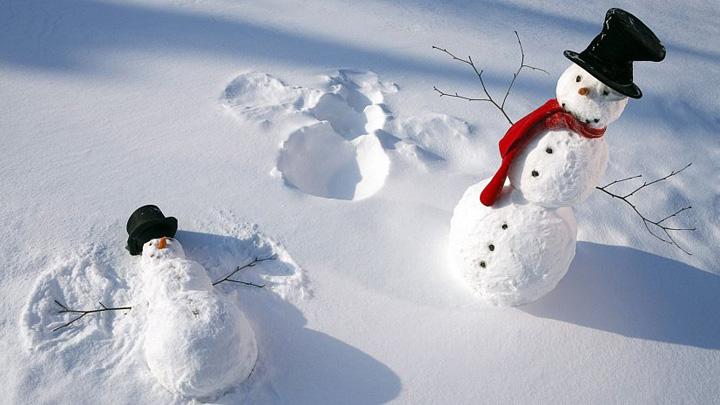 Жителей Воронежской области на рабочей неделе ожидает потепление