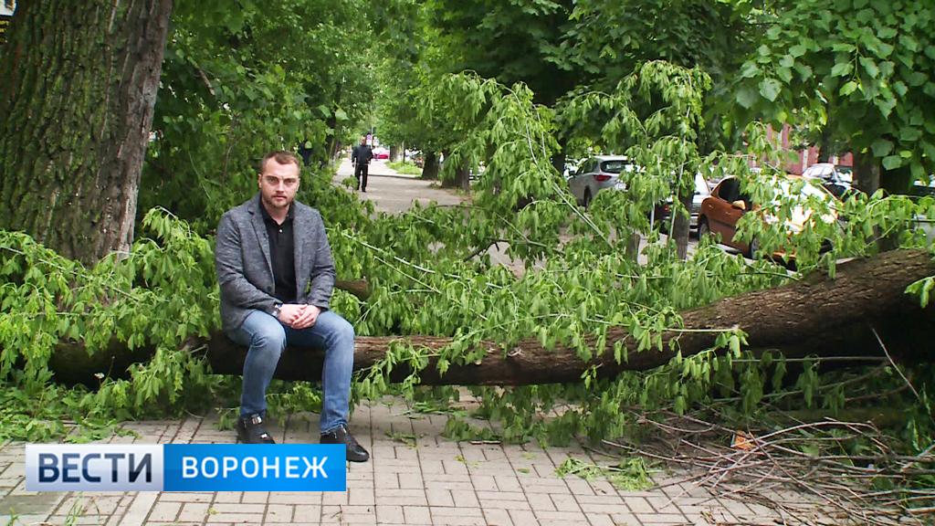 Прогноз погоды с Ильёй Савчуком на 21.05.18