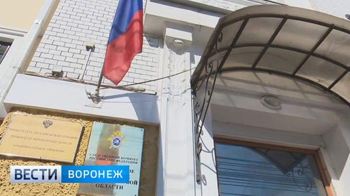Воронежский суд отложил вопрос об аресте дочери главы района на 72 часа