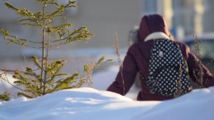 В Воронеже неизвестный мужчина напал на девочку возле школы