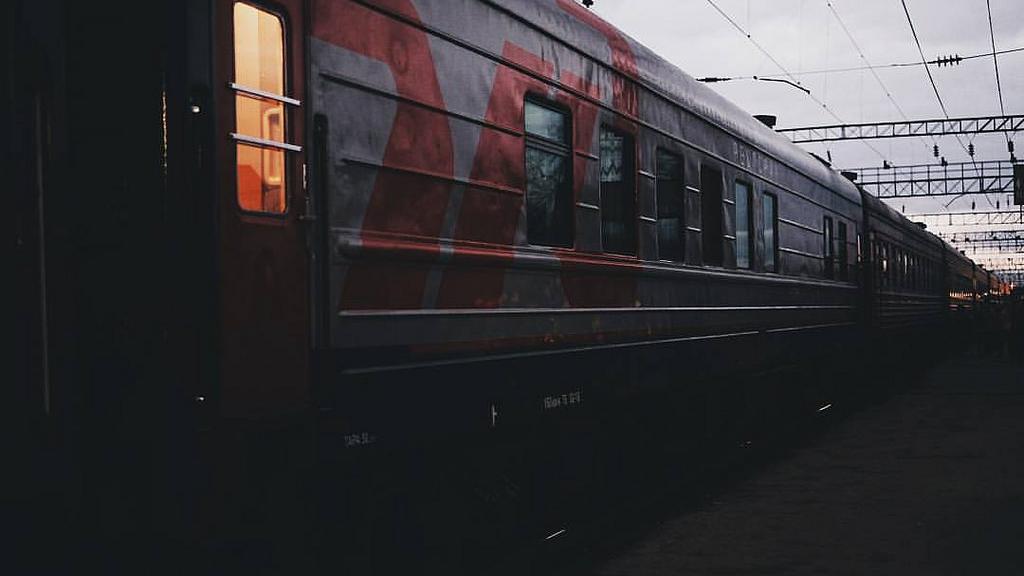 В МВД сообщили подробности загадочной смерти пропавшего из поезда воронежца
