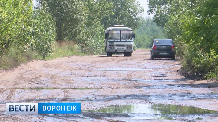 Почему воронежские дачники добираются до участков по разбитой бесхозной дороге