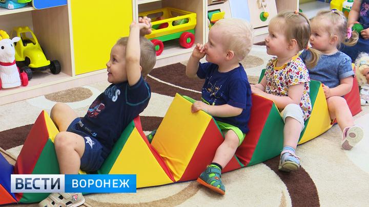 В воронежских детсадах появится более 2,5 тыс. мест для малышей ясельного возраста