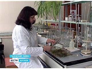 Аграрии Воронежского региона отправились в лаборатории - проверять озимые