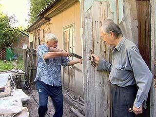 Бешеные лисы атакуют Воронеж