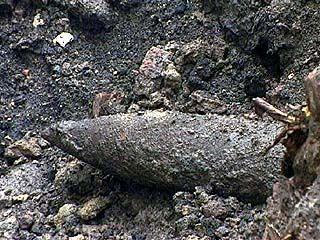 Боеприпасы времен ВОВ обнаружены в Поворинском районе