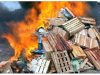 Более трехсот килограммов наркотиков отправились в огонь
