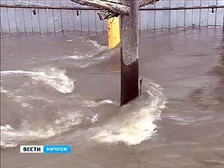 Больше всего от паводка пострадали Семилукский, Новоусманский и Панинский районы