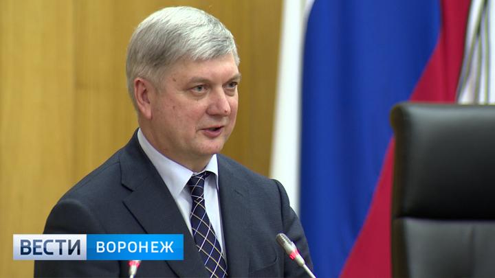 Александр Гусев подтвердил намерение баллотироваться в губернаторы Воронежской области