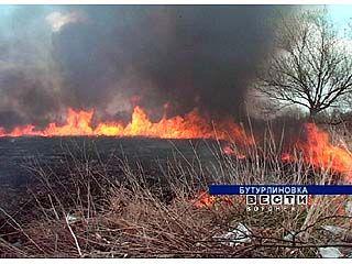 Бутурлиновцы избавляются от камыша и мусора с помощью огня