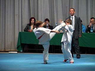 Чемпионат и первенство области по каратэ завершились