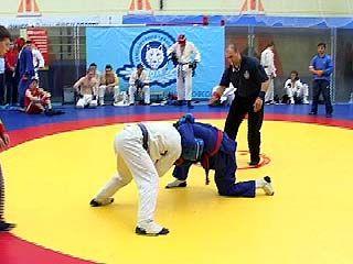 Чемпионат области по рукопашному бою финишировал в Воронеже