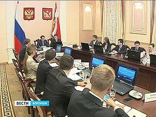 Члены молодёжного правительства представили главе региона социальные проекты