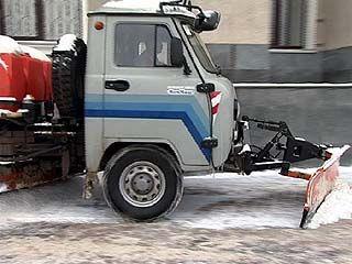 Чуть меньше 50% воронежцев довольны тем, как в городе убирают улицы