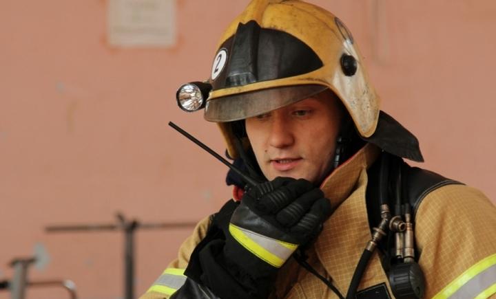 Зрителей воронежского Цирка эвакуировали во время представления из-за пожарной тревоги