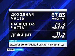 Депутаты облдумы приняли бюджет Воронежского региона на 2014 год в первом чтении