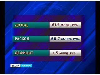 Депутаты облдумы считали бюджет Воронежского региона 2013