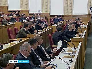 Депутаты воронежской облдумы не хотят отчитываться о собственных доходах