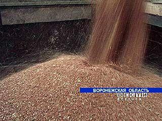 Два миллиона тонн зерна собрали воронежские аграрии