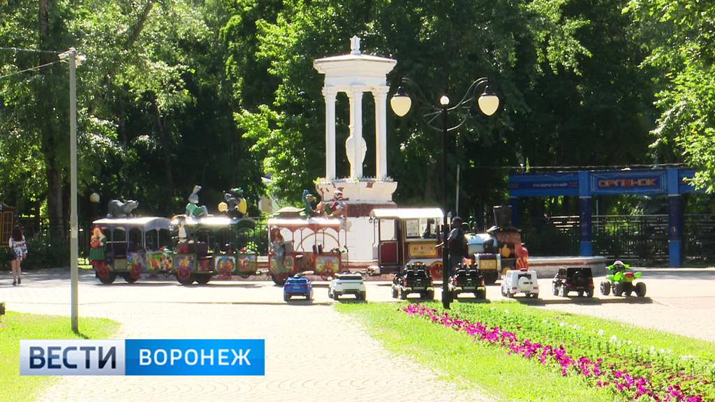 Воронежцы раскритиковали прежний вариант модернизации парка «Орлёнок»