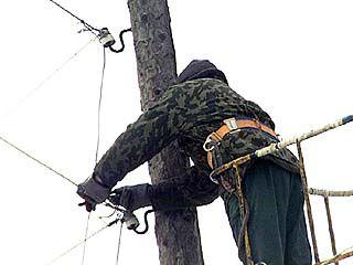Энергетики Воронежа работают без сна и отдыха