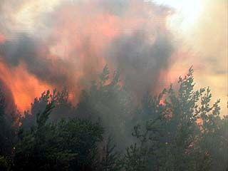 Ещё один пожар вспыхнул в Северном микрорайоне Воронежа - за авторынком