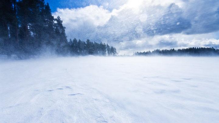 В Воронежской области объявили «оранжевый» уровень опасности из-за морозов и сильного ветра