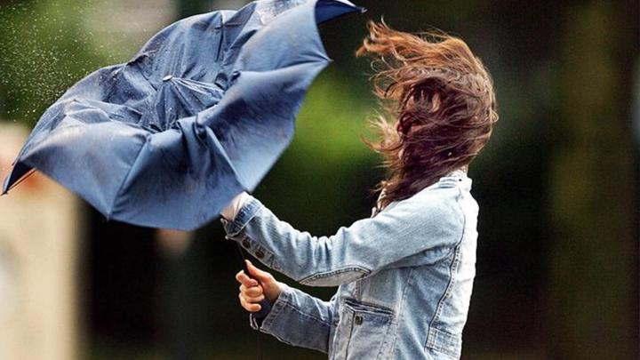 Спасатели: в Воронежской области вновь опасно усилится ветер