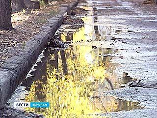 Фекалии и сточные воды затопили двор жилого дома в Воронеже