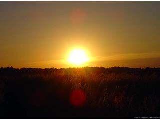 Гидрометцентр прогнозирует 38-градусную жару