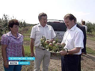 Губернатор побывал с рабочей поездкой в Острогожском районе