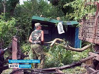 Губернатор распорядился восстановить повреждённые во время урагана объекты