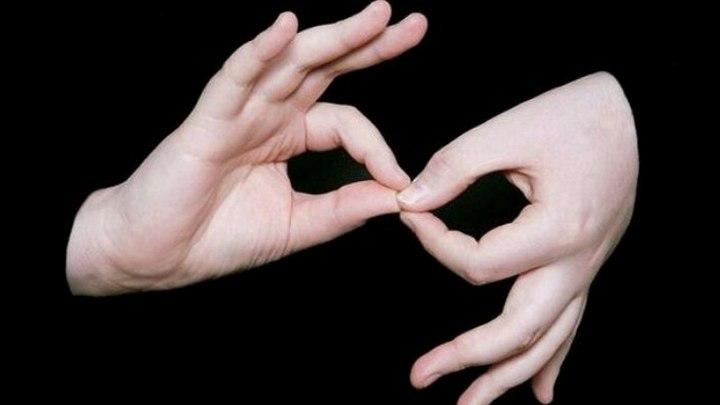 В Воронеже актёры переведут известные песни на язык жестов
