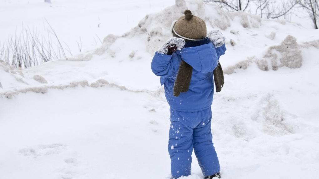 Пропавшего в Воронеже 7-летнего мальчика нашли живым