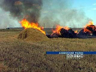 Хозяйства Воронежской области продолжают сжигать стерню