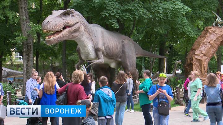 Мэрия Воронежа вернулась к планам благоустройства парка «Орлёнок»