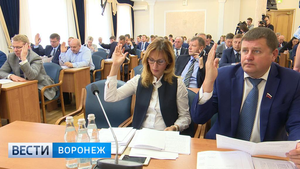 Гордума определилась с кандидатами в Общественную палату Воронежа нового созыва