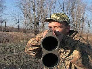 Из-за африканской чумы свиней охота в Воронежской области под запретом