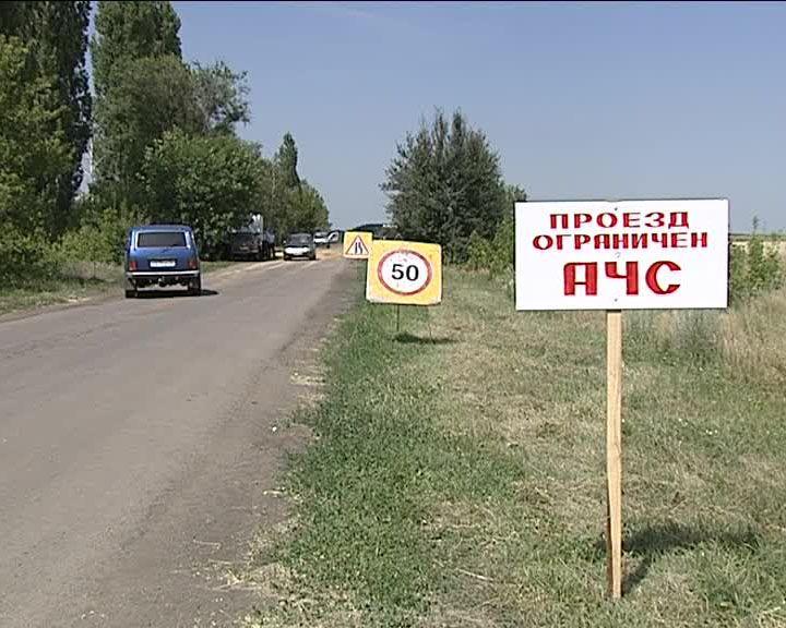 Карантин по Африканской чуме свиней в Воронежской области сняли
