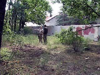 Кто превращает лесной фонд Воронежской области в коттеджные поселки?