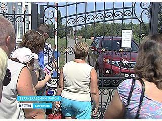 Лаптевский пруд в Верхнехавском районе - с недавних пор закрытая VIP-зона