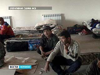 Ликвидированы четыре канала незаконной трудовой миграции в Воронежскую область